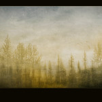 Rain Forest Tapestry , fine art photography award winner ppoc alexandra morrison