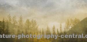 mountain-lake-1cropTextureFOR-WEBW