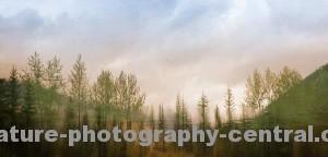mountain-lake-1cropW