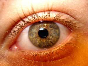 ___Stock_Eye__